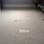 Cranberry Juice Stain Removal Schaumburg A
