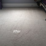 Cranberry Juice Stain Removal Schaumburg B