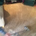 Dirty-Carpet-Cleaned-Schaumburg