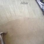 Schaumburg-Carpet-Cleaning-Company
