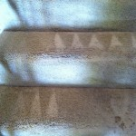 Schaumburg-Stairs-Carpet-Cleaning