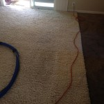 Schaumburg-Traffic-Area-carpet-cleaners