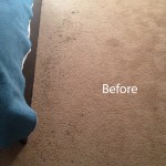 ink stain removal Schaumburg-A