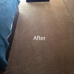 ink stain removal Schaumburg-B